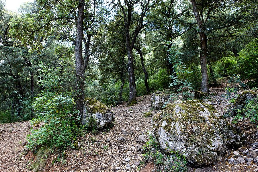 Parque Natural Font Roja, Alcoy