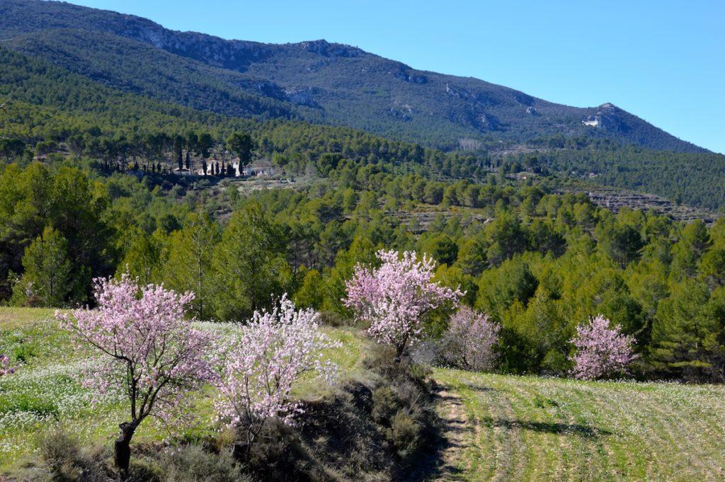 Parque Natural Font Roja uno de los más visitados de la Comunidad Valenciana