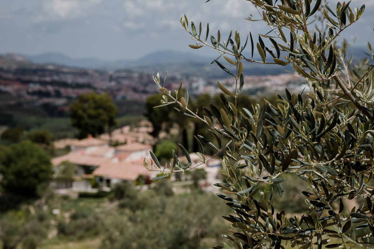 Hoteles rurales en Alicante